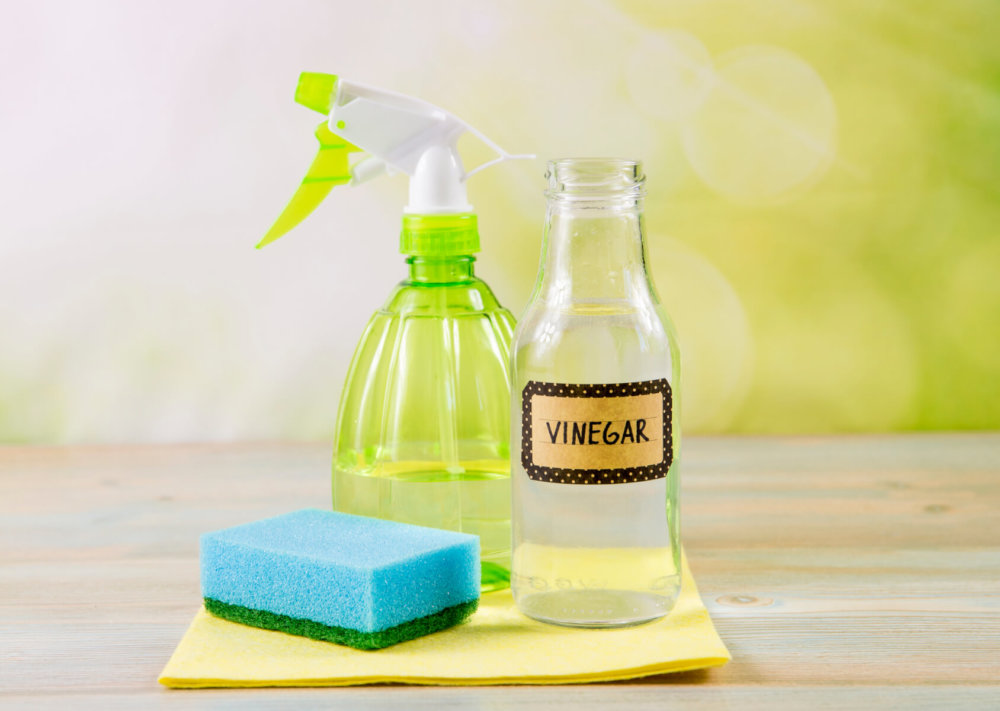 Vinegar, spray bottle and a sponge